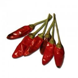 Dried Calabrian Pepper