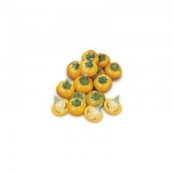Dried Cherry Pepper Yellow