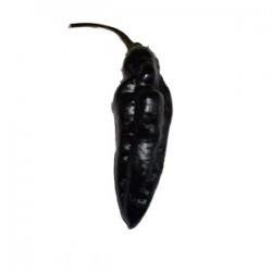 Pimenta da Neyde seeds